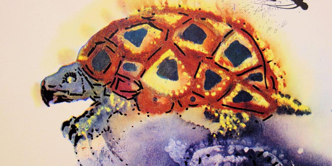 Alice in Tara Minunilor ilustrata de Salvador Dali