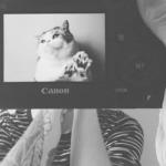 Proiectul fotografic Petheadz - Animalele de companie si stapanii lor