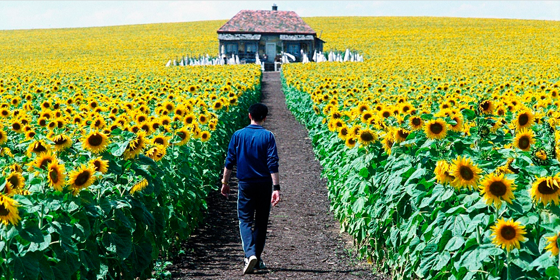 Everything is Illuminated, cronica de film