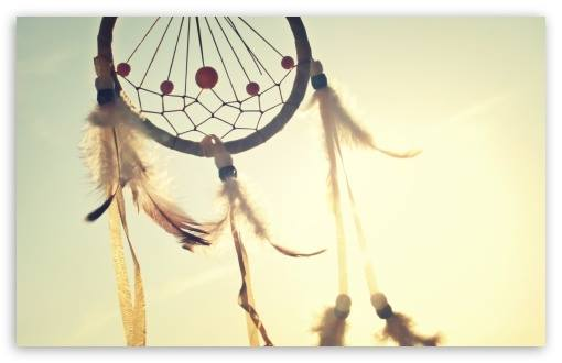 Dream Catchers Wiki Legendele unui Dreamcatcher Visele si panza de paianjen Raftul 32