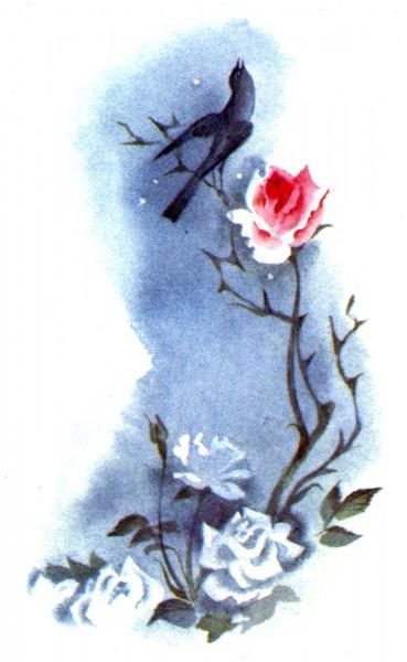 Privighetoarea si trandafirul_Oscar_Wilde