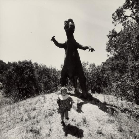 Copiii cosmarului
