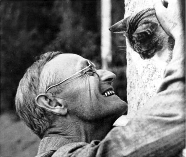 Herman Hesse - Basme. Recenzie de carte