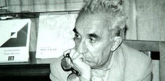 Cine e pentru noi Mircea Ivanescu?
