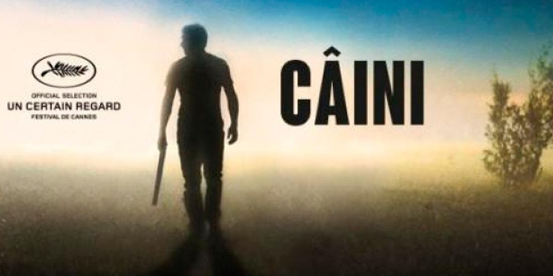recenzie Caini (2016), regie Bogdan Mirica