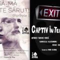Spectacole Teatrul de Pica 2 si 9 aprilie