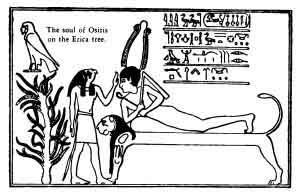 Osiris, zei egipteni