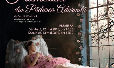 balet Frumoasa din Padurea Adormita ONB premiera