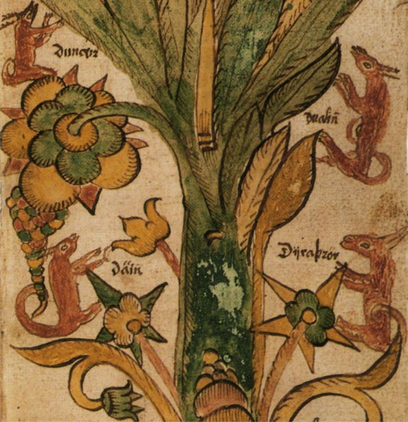 Copacul Lumii mitologie nordica educatie cultura generala