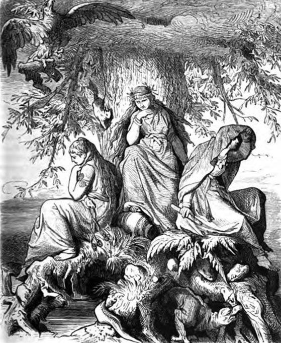 mitologie nordica Yggdrasil educatie cultura generala