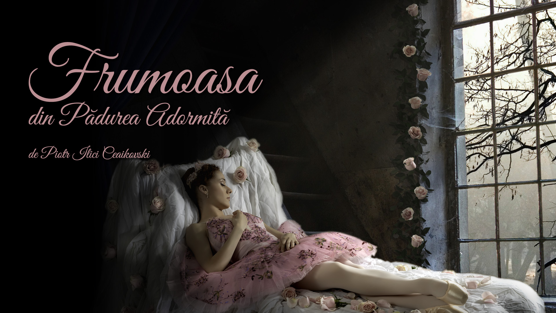 Frumoasa din Padurea Adormita Ceaikovski balet Raftul cu idei