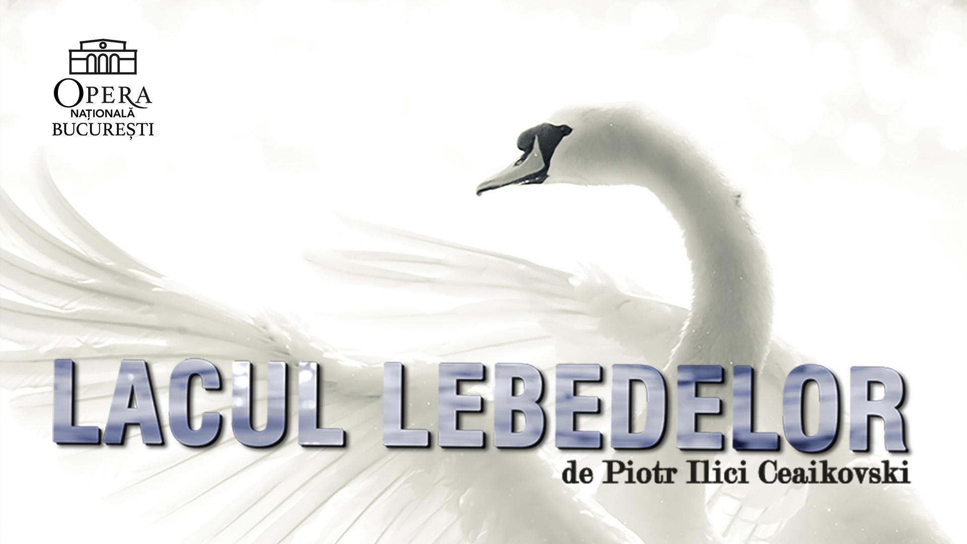 Lacul Lebedelor balet Raftul cu idei ONB Ceaikovski