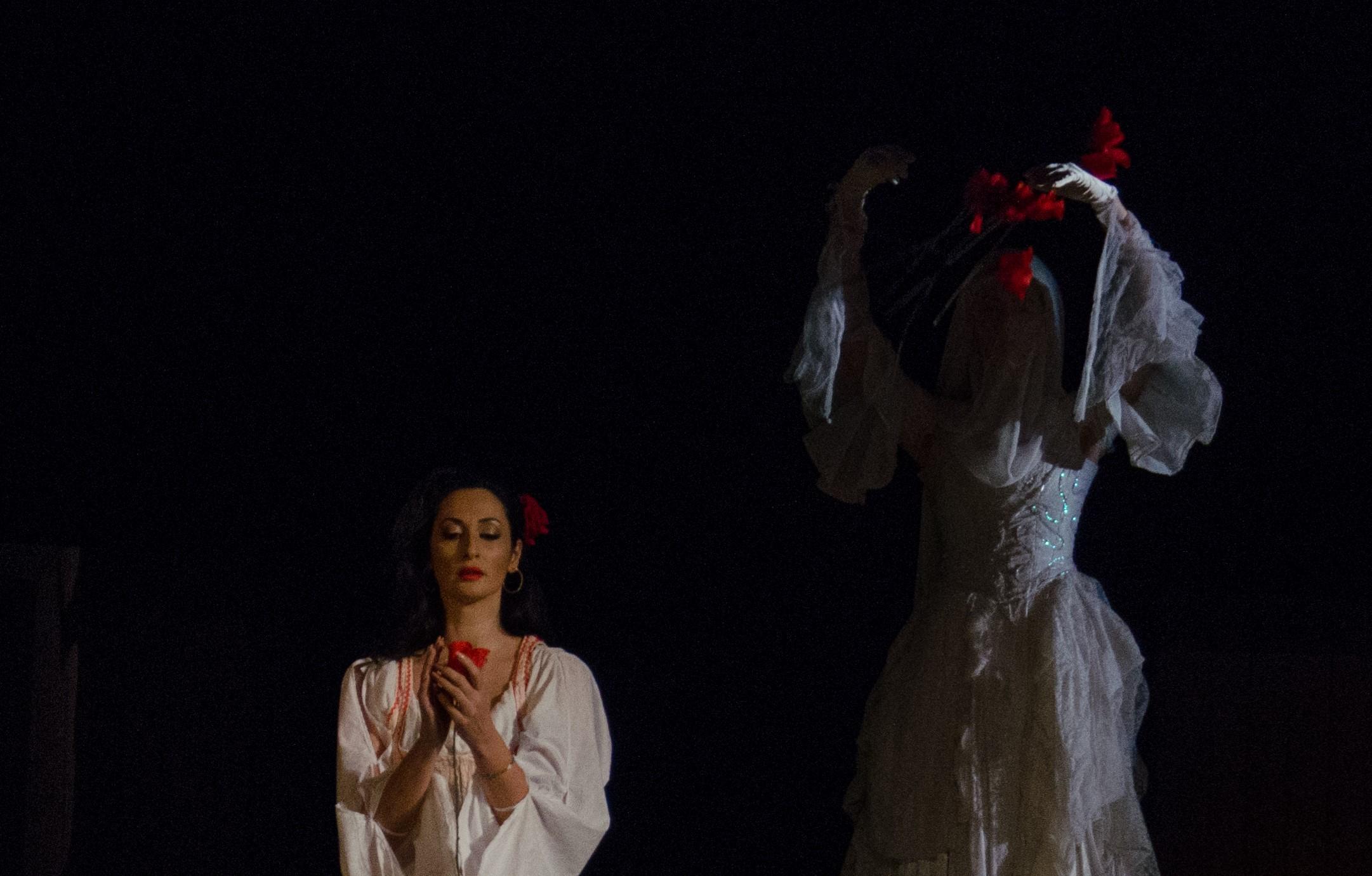 Raftul cu idei Carmen opera Bizet