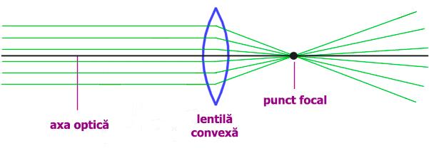 lentila convexa